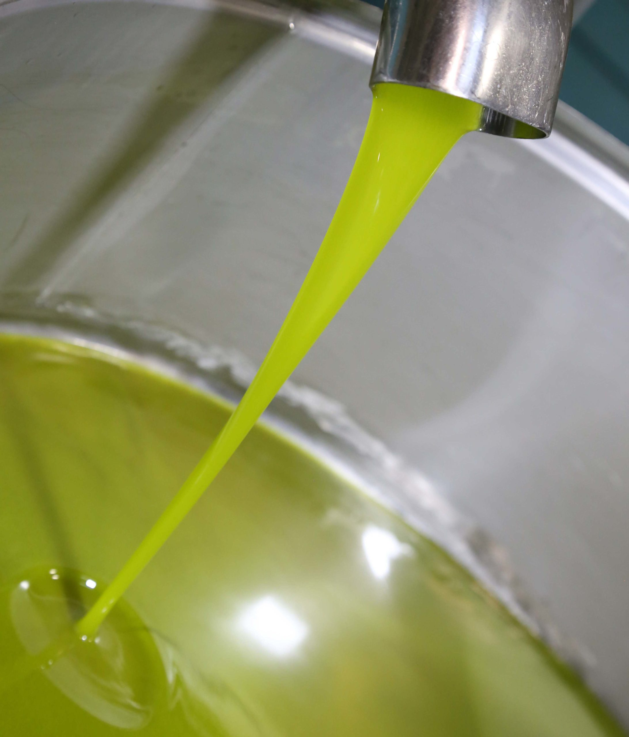 Frantoio di San Gimignano visite guidate e vendita diretta olio